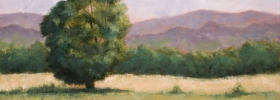 Yet Another Tree in a Field – Oil Painting