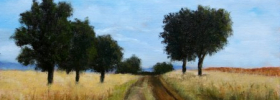 Country Road – Oil Painting