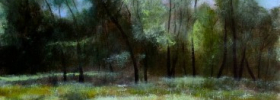 Forrest – Oil Painting