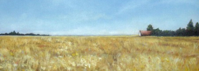 Fields of Gold – Oil Painting