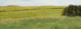 Meadows – Oil Painting