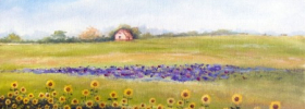 Sunflower Farm – Oil Painting
