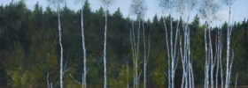 Birch Trees – Oil Painting