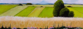 Fields – Oil Painting