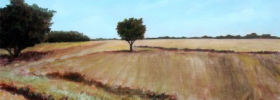 Yet Another Tree in a Fields – Oil Painting