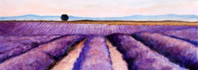 Lavender Fields – Oil Painting