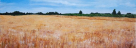 Wheat Fields – Oil Painting