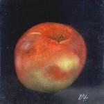 Apple – Oil Painting