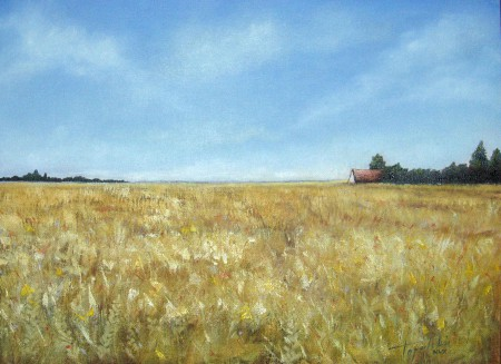 Fields of Gold - Oil Painting on Canvas by artist Darko Topalski