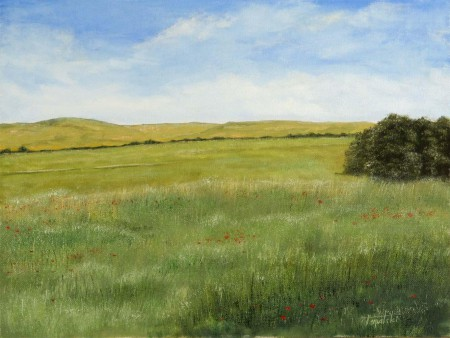 Meadows - Oil Painting on Canvas by artist Darko Topalski