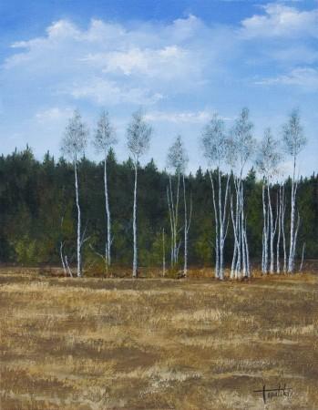 Birch Trees - Oil Painting on Canvas by artist Darko Topalski