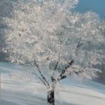 Winter Tree – Oil Painting