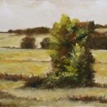 Mono Landscape – Oil Painting