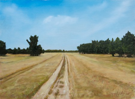 Country Road Through the Fields - Oil Painting on HDF by artist Darko Topalski