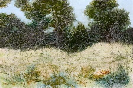 Curly Forrest - Original Oil Painting on HDF by artist Darko Topalski