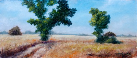Trees in a Wheat Fields - Original Oil Painting on Canvas by artist Darko Topalski