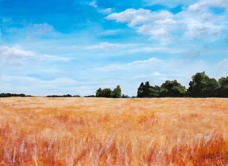Fields of Wheat - Original Oil Painting on HDF by artist Darko Topalski