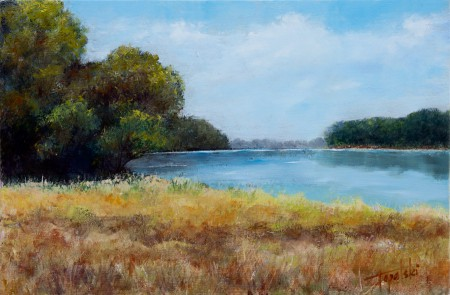Forrest By the Lake - Original Oil Painting on HDF by artist Darko Topalski