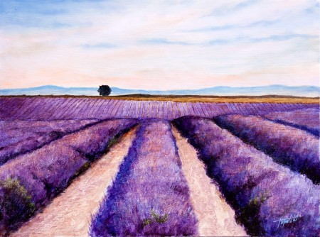 Fine Art - Lavander Fields - Original Oil Painting on HDF by artist Darko Topalski
