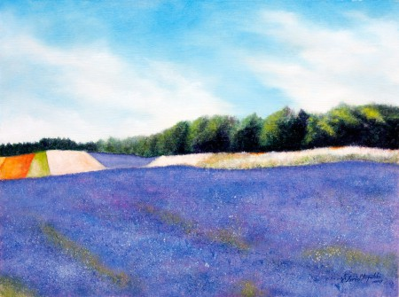 Fine Art - Lavender Field - Original Oil Painting on HDF by artist Darko Topalski