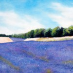 Lavender Field – Oil Painting