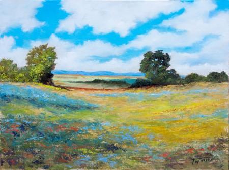 Fine Art - Sunny Valley - Original Oil Painting on HDF by artist Darko Topalski