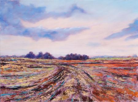 Fine Art - Plain Abstractions - Original Oil Painting on HDF by artist Darko Topalski