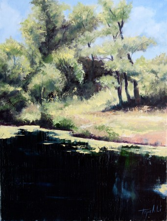 Fine Art - On the River Pond - Original Oil Painting on HDF by artist Darko Topalski