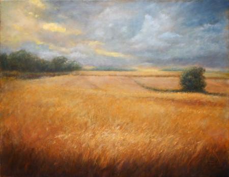 Fine Art - Barley Field - Original Oil Painting on Canvas by artist Darko Topalski