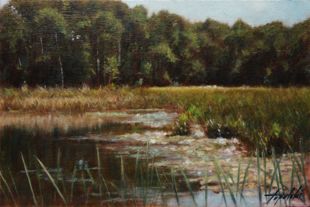 Fine Art - Marsh - Original Oil Painting on Canvas by artist Darko Topalski