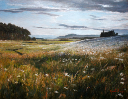 Fine Art - Flowery Fields - Original Oil Painting on Canvas by artist Darko Topalski
