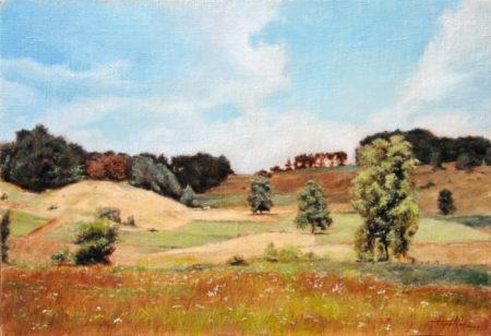 Fine Art - Mountain Hillside - Original Oil Painting on Canvas by artist Darko Topalski - artwork landscape gallery