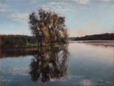 Fine Art - A Lake - Original Oil Painting on Canvas by artist Darko Topalski