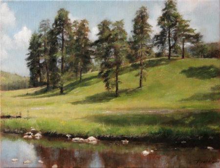 Fine Art - Mountain Hillside - Original Landscape Oil Painting on Canvas by artist Darko Topalski