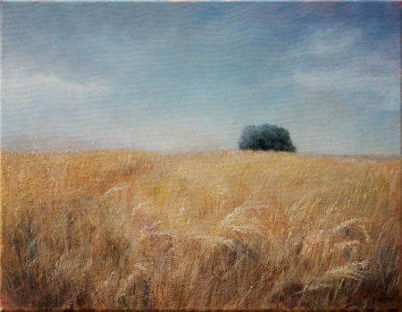 Fine Art - Wheat Field - Landscape Original Oil Painting artwork on Canvas by artist Darko Topalski