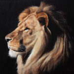 Lion Portrait – Commissioned painting