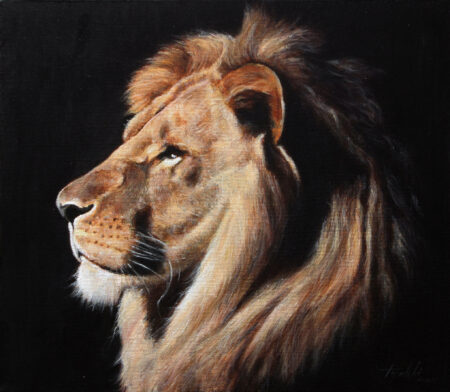 Fine Art - Lion Portrait - Original animal Oil Painting on Canvas by artist Darko Topalski