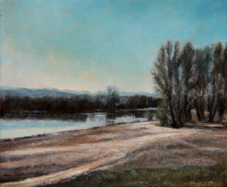 By the Danube River Pond - Original Landscape Oil Painting on Canvas - by artist Darko Topalski